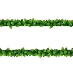 Green leaves seamless frame isolated on white vector