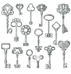 Silver keys set vector