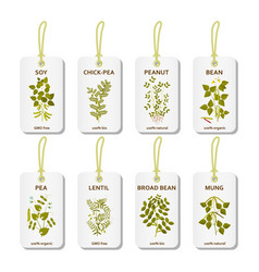 Tags with legumes plants with leaves pods and vector