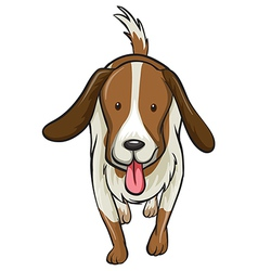 A dog vector image vector image