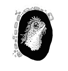 Iguana face black and white vector