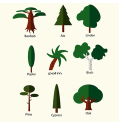 Flat trees set vector