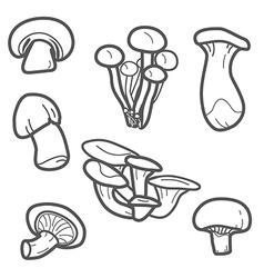 mushroom lines vector image