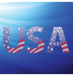 USA capital letters vector image