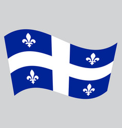 flag of quebec waving on gray background vector image