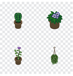 Isometric houseplant set of flower flowerpot vector