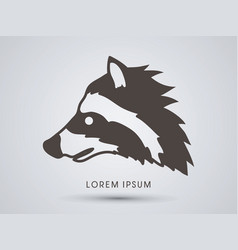 raccoon face graphic vector image