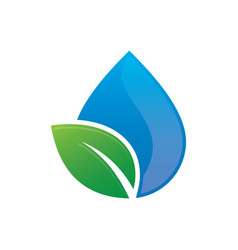 leaf water drop nature logo vector image