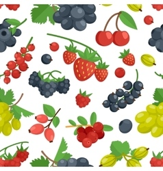 Berries color seamless ornament vector