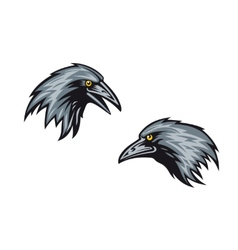 Heads of two blackbirds or ravens vector