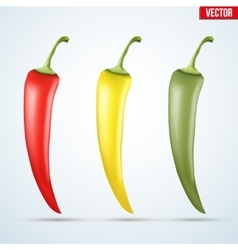 Set of hot chili peppers vector