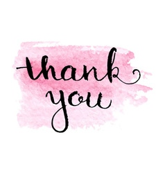 Thank you hand lettering elegant card vector