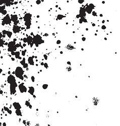 Black Ink paint splatter on white background Spray vector image vector image