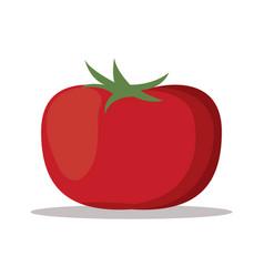 Tomato nutrition healthy image vector