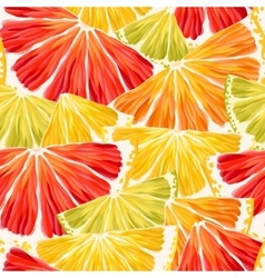 Citrus slices seamless vector image