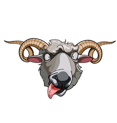 Cartoon head horned sheep vector