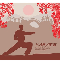 Man training karate vector