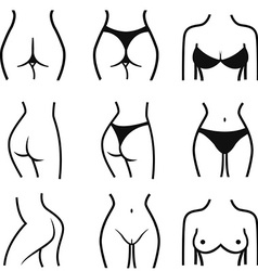 Set of stylized female body parts set of stylized vector