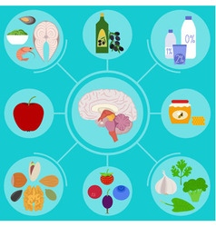 Anatomic brain health vector