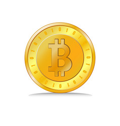 coin golden bitcoin vector image