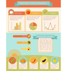 Vegetables infographic set vector