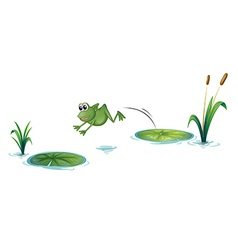 A jumping frog vector image