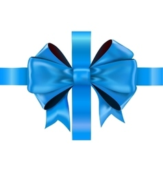 Blue bow ribbon vector