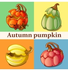Four icons with pumpkin vector image vector image