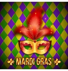 Gold and red carnival mask on colorful grid vector image