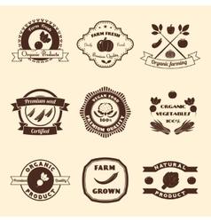 Vegetable Label Set vector image
