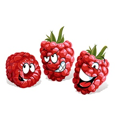 Cool raspberry cartoon vector
