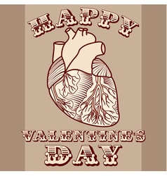 Sarcastic valentine card with anatomic heart vector