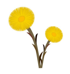 Coltsfoot clip art double vector