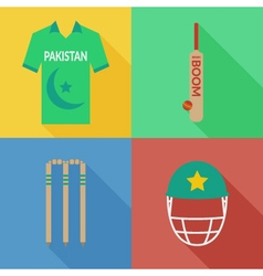 Pakistan cricket icons vector image