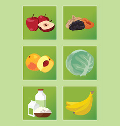Apples dried fruits peaches cabbage dairy vector