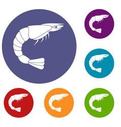 Fresh sea shrimp icons set vector