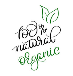 100 natural organic vintage text on white vector