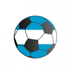 Flag of argentina and soccer ball vector