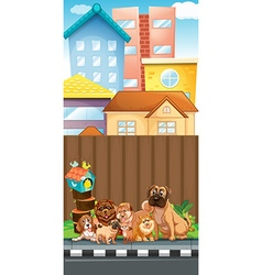 Dogs sitting on the pavement vector