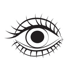 cartoon image of eye vector image