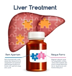 Liver treatment concept vector image vector image