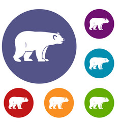 Wild bear icons set vector