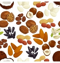 Nut bean seed grain seamless pattern background vector