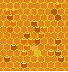 Bee hive lightth vector