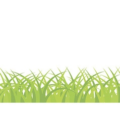 Grass background seamless pattern vector image