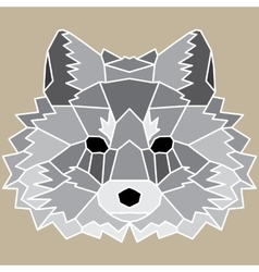 Gray low poly lined fox vector image vector image