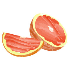 Isolated grapefruit cuts vector