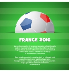 Themed with football ball and field vector image vector image