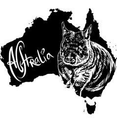 Wombat on map of australia vector