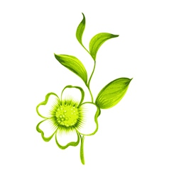 Branch of green tea with flowers and leaves vector